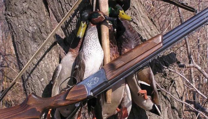 В Югре ведется постоянный мониторинг охотничьих ресурсов
