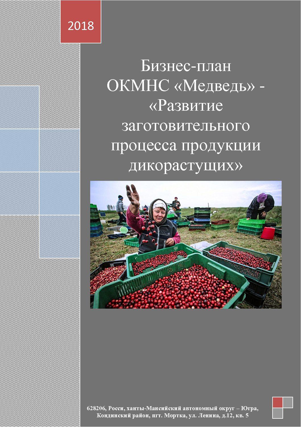 7 ноября в г. Ханты-Мансийске состоялся окружной конкурс по предоставлению грантов