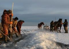 На Сахалине начался промысел наваги. Представители коренных разработали схему установки снастей на двух реках – Поронай и Таранка