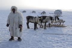 6 апреля в Дудинке стартует День оленевода. Из Носковской и Тухардской тундры передают, что на праздник движутся оленеводы с семьями