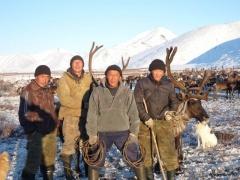 Межрегиональное сотрудничество – в действии. Ямальский оленевод Михаил Яр помог тоджинским оленеводам в восстановлении поголовья стада