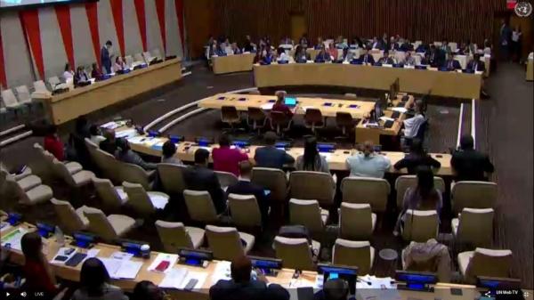 ЦС КМНС – Утверждены новые члены Постоянного форума ООН по вопросам коренных народов