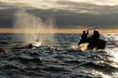 На Чукотке уже подано 3,5 тысячи заявок на добычу рыбы и морзверя коренными народами. Прием заявок продолжается до 1 сентября