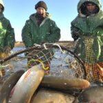Утверждены правила рыболовства для всей Западной Сибири