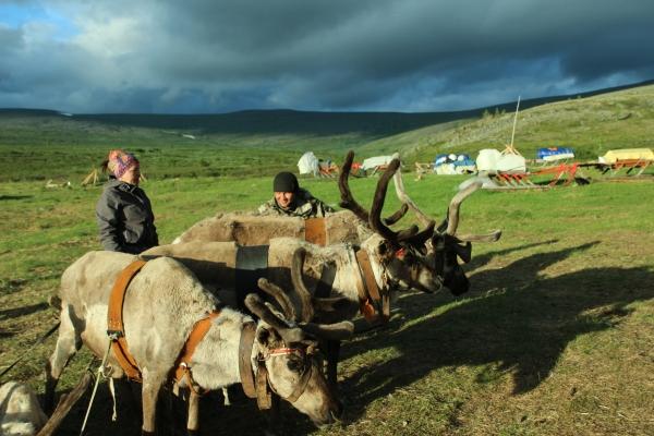 Презентация участников экспедиции «Оленьими тропами Приполярного Урала» состоится в Ханты-Мансийске